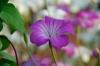 09_spring_057