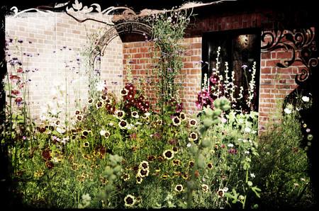 Flowerold
