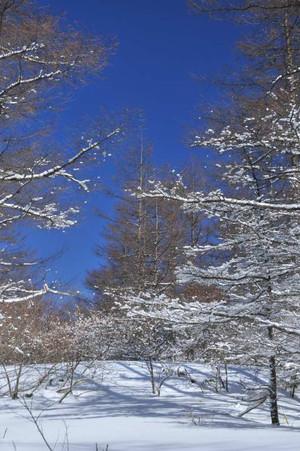 Snow_01_3