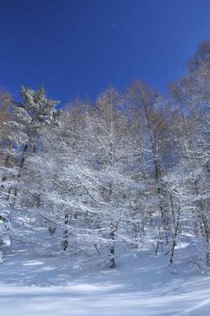 Snow_02_3