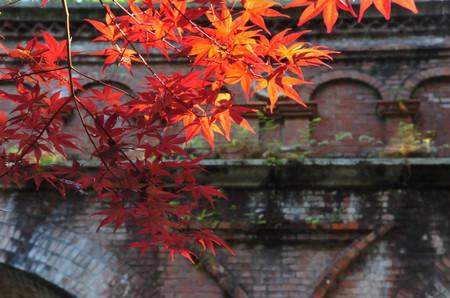 Kyoto0306_05