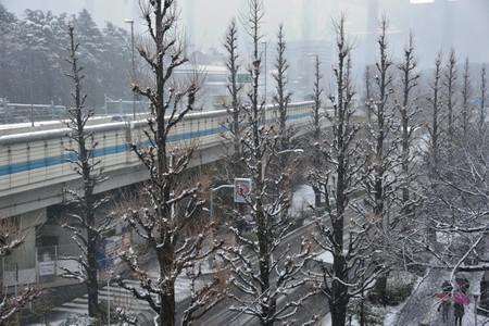 Snowpark_02