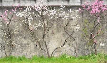 Takaosan0410