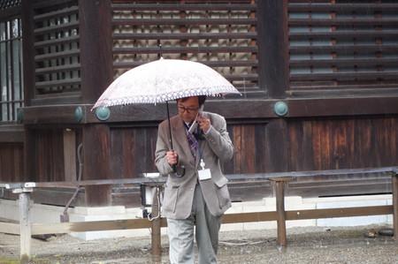 Kudan_sakura_07