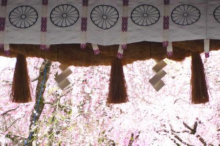Mishima_03_03_2