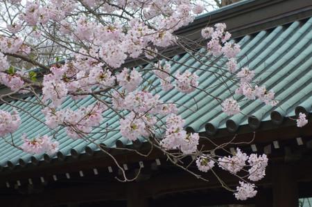 Mishima_03_3