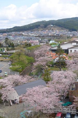 Mishima_05
