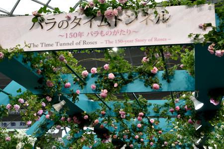 Garden_03_2