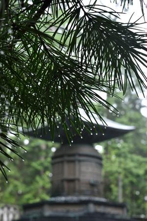 Toshogu_05