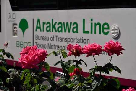 Arakawa_02