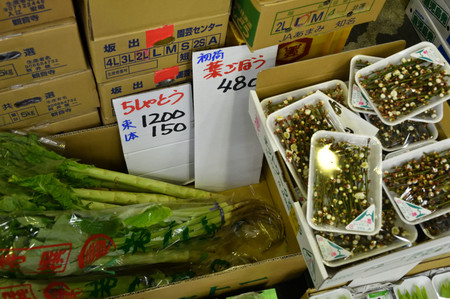 Tsukijji_000_004