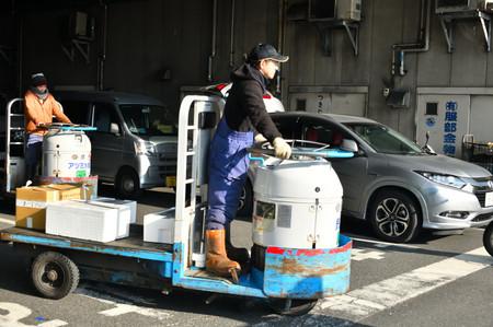Tsukijji_000_005