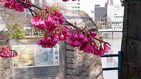 Takebashi_02