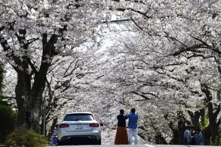 Kamakura_09