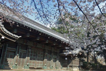 Koishikawa_01_03