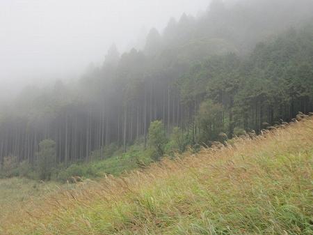 Hakone_6
