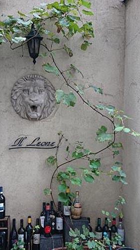 Illeone