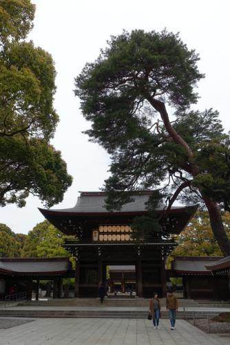 Jingu0412_01