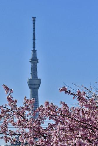 Nakagawa0223_02