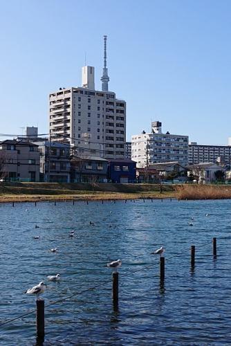 Nakagawa0223_09