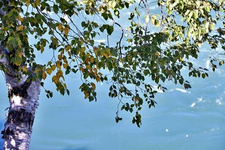 Niagara_07_09