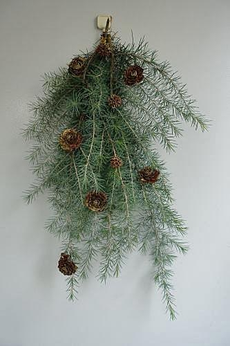 Pine1211_02