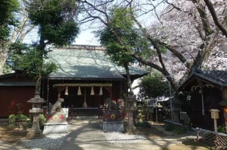 Sakura0317_01