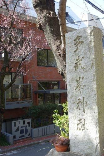 Sakura0317_02